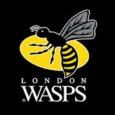 Bonjour, Pour finaliser sa saison notre club doit rencontrer et vaincre sur 2 matchs le 7èmedu championnat anglais (les London Wasps de nos anciens Haskell, Palmer et Davies) et ainsi […]