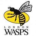 Bonjour à toutes et à tous, Nous connaissons à présent la date de notre match de barrage pour accéder à l'élite du rugby Européen contre les London Wasps. Ce match […]